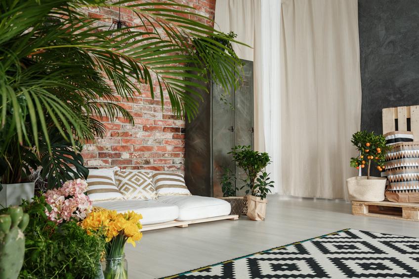 sind pflanzen im wohnzimmer noch trend. Black Bedroom Furniture Sets. Home Design Ideas