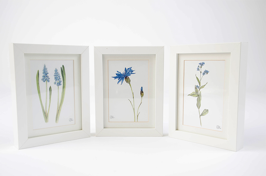 Frühlingsdeko: 3er Set A6 Bilder Blüte Blau