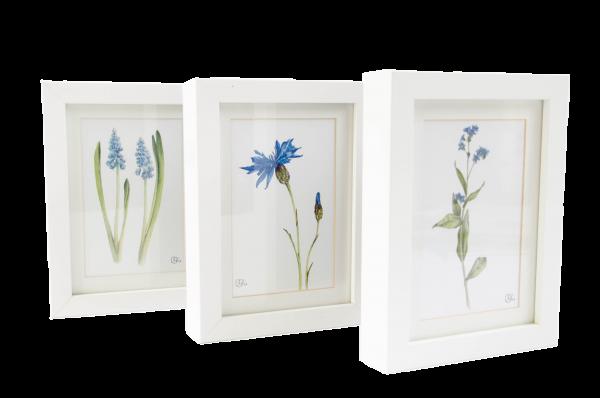Set Motivkarten Blüten Blau - A6