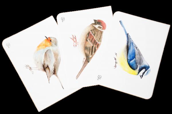 Set Motivkarten Vögel - A6