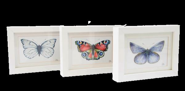 Set Motivkarten Schmetterling - A6