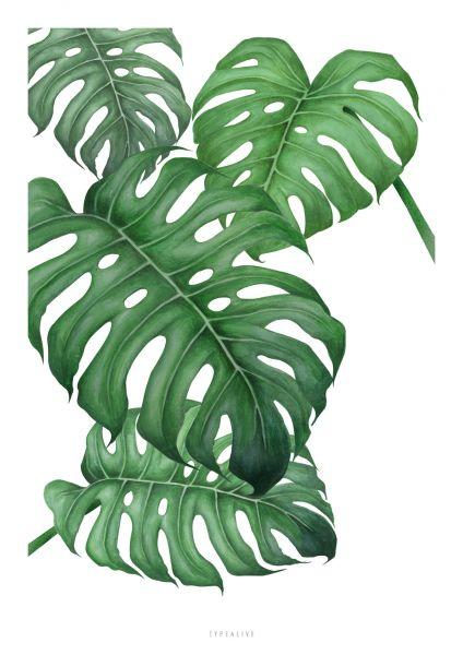 """A3-Print """"Tropical"""""""