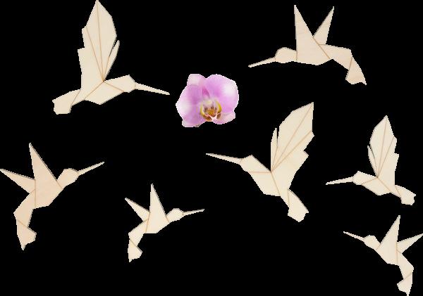 7-teiliges Wandstickerset (Holz) - Kolibri